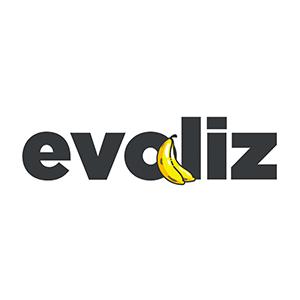 Evoliz_logo
